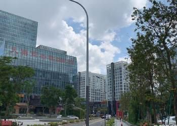 惊爆!深圳农村商业银行招租位于龙岗CBD商业商务政商!图片1