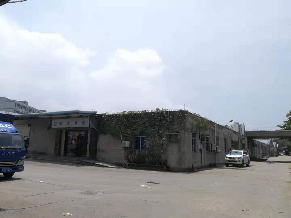 长安镇上角新出单一层1500平方厂房出租-图2