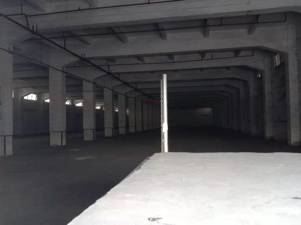大朗新出单一层厂房仓库6000平方大小都可以分