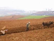 内蒙古280亩国有指标官网出售