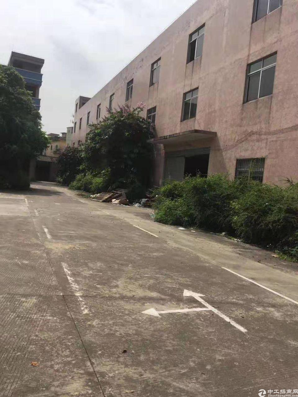 广州市白云区太和镇夏良厂房出租人