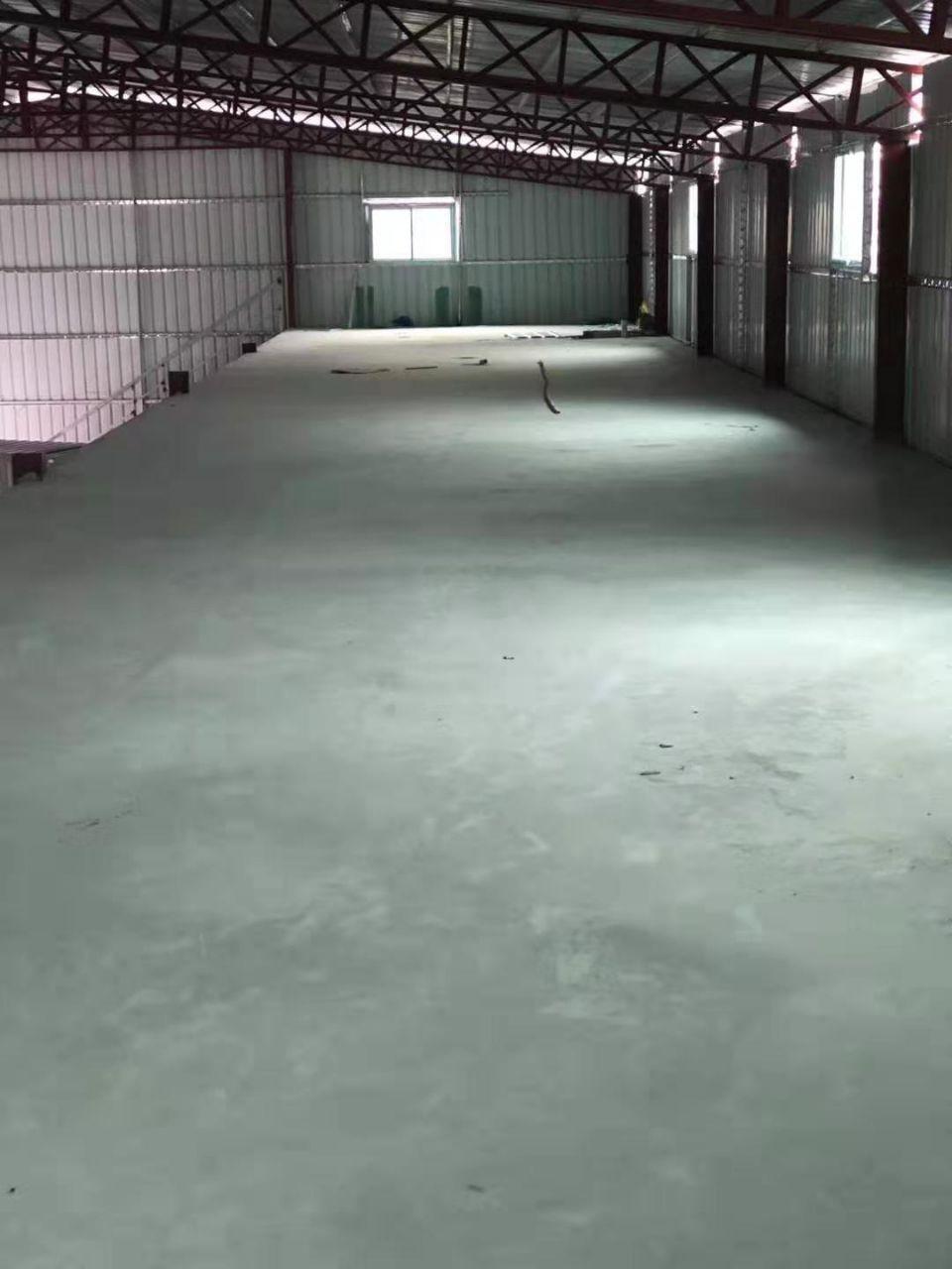 东莞市长安镇沙头新出原房东钢构厂房800平招租