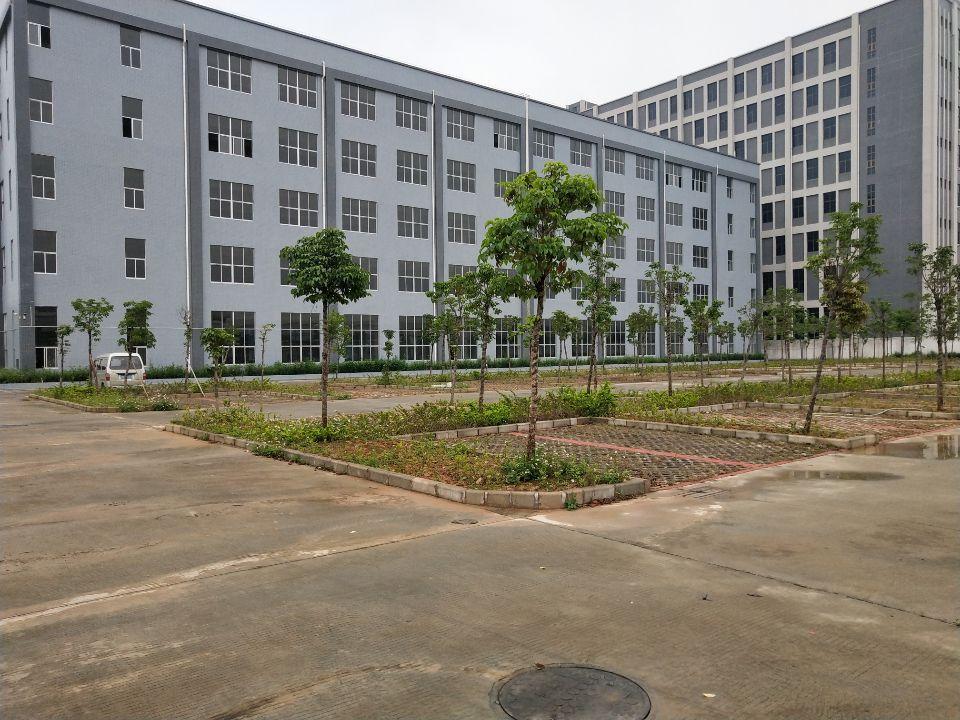 大朗独门独院厂房一至六层15000平方出租