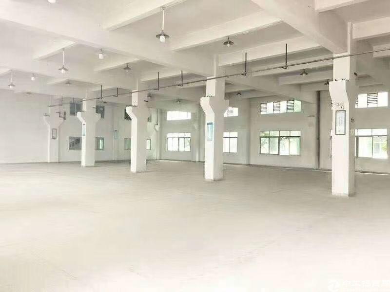 塘厦花园式厂房17000平方诚意出售.厂房形象非常漂亮