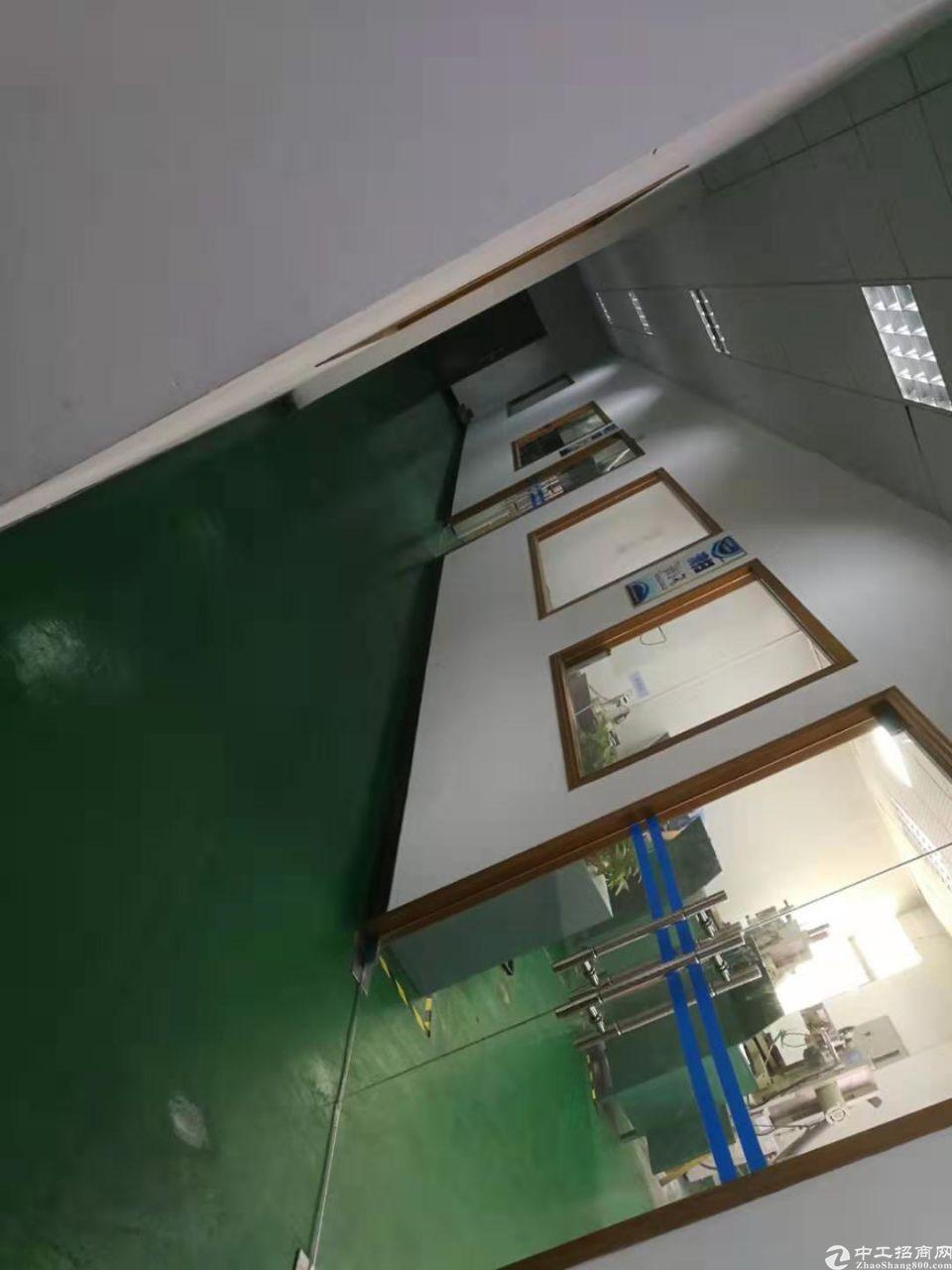长安镇上角新出单一层1500平方厂房出租-图3
