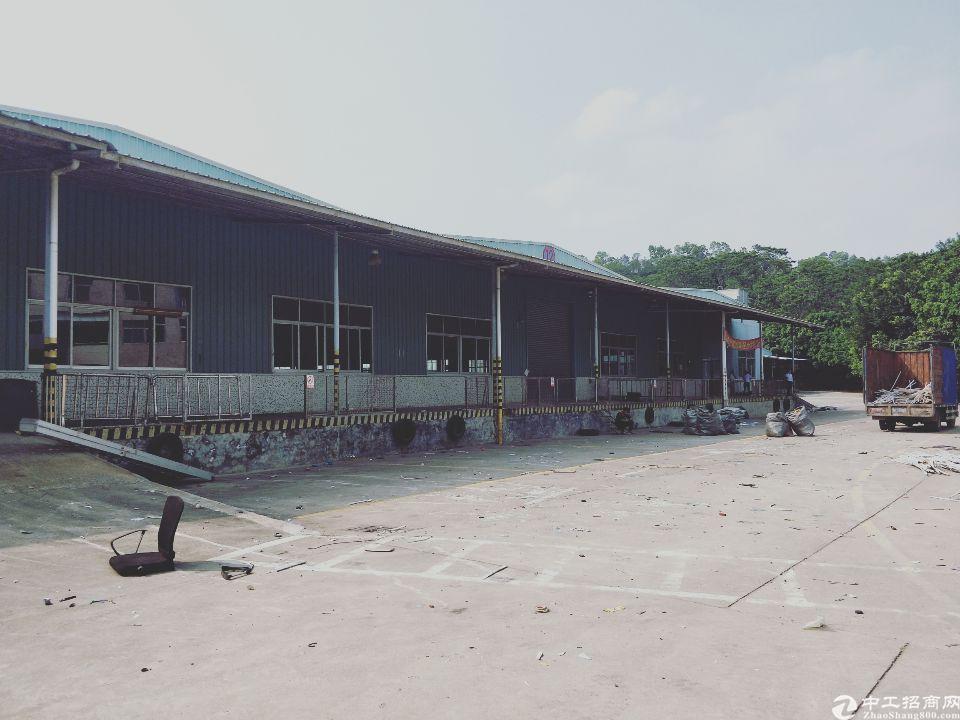 观澜牛湖原房东物流仓库30000平米带卸货平台消防喷淋
