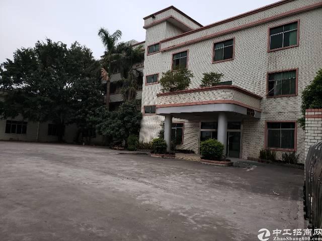 清溪小独院厂房出售建筑面积2500平,目前空置-图2