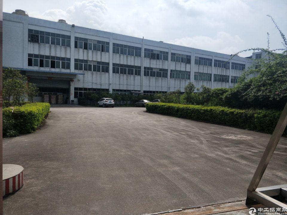 高埗镇花园式厂房实积面积出租