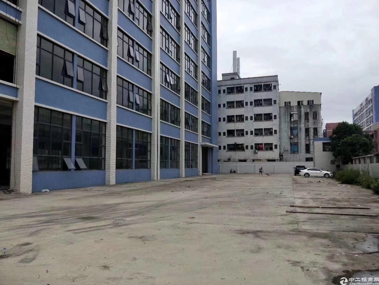 沙田镇全新标准厂房招租大小可分租18000平方