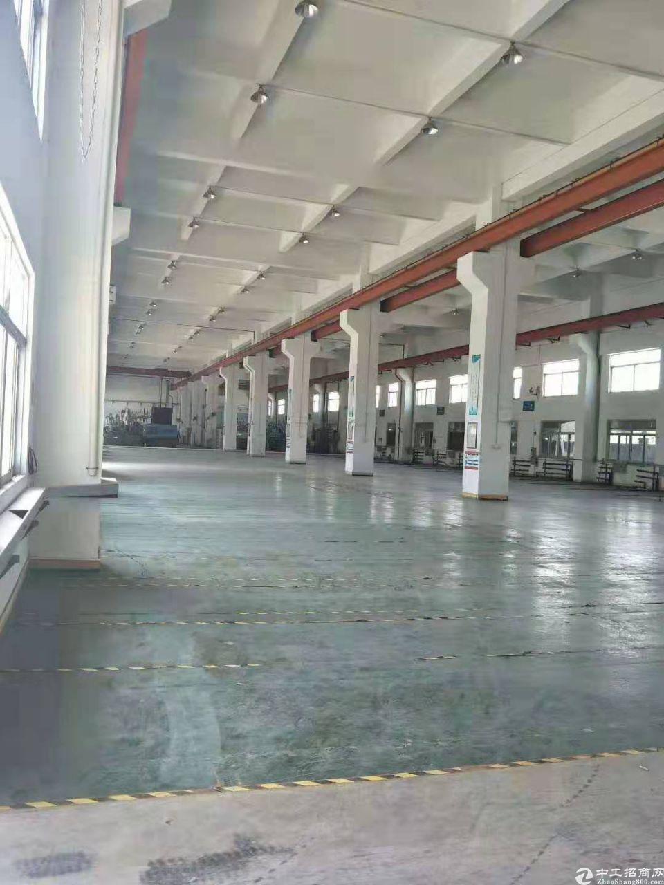 桥头镇新出个人厂房分租一楼十米高,800平方