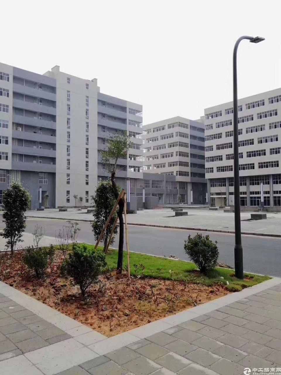 惠州全新厂房分层出售,单层750平