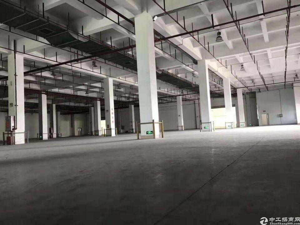 福永机场60000平米独院厂房招租
