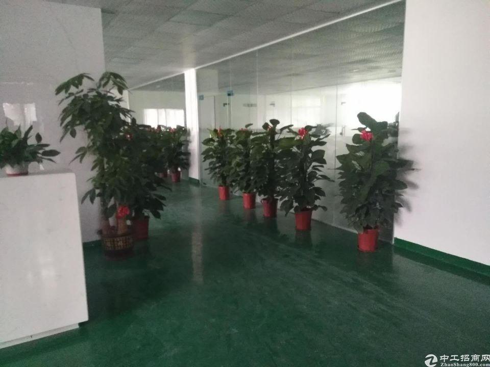 双证齐全的标准3楼带现成的办公和地坪漆装修700方