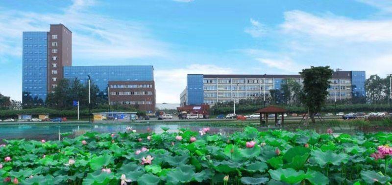 龙泉经开区50平米办公室出租