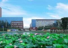 龙泉经开区精修办公楼出租
