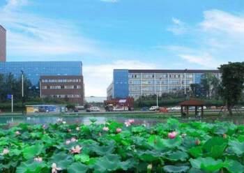 龙泉经开区50平米办公室出租图片1