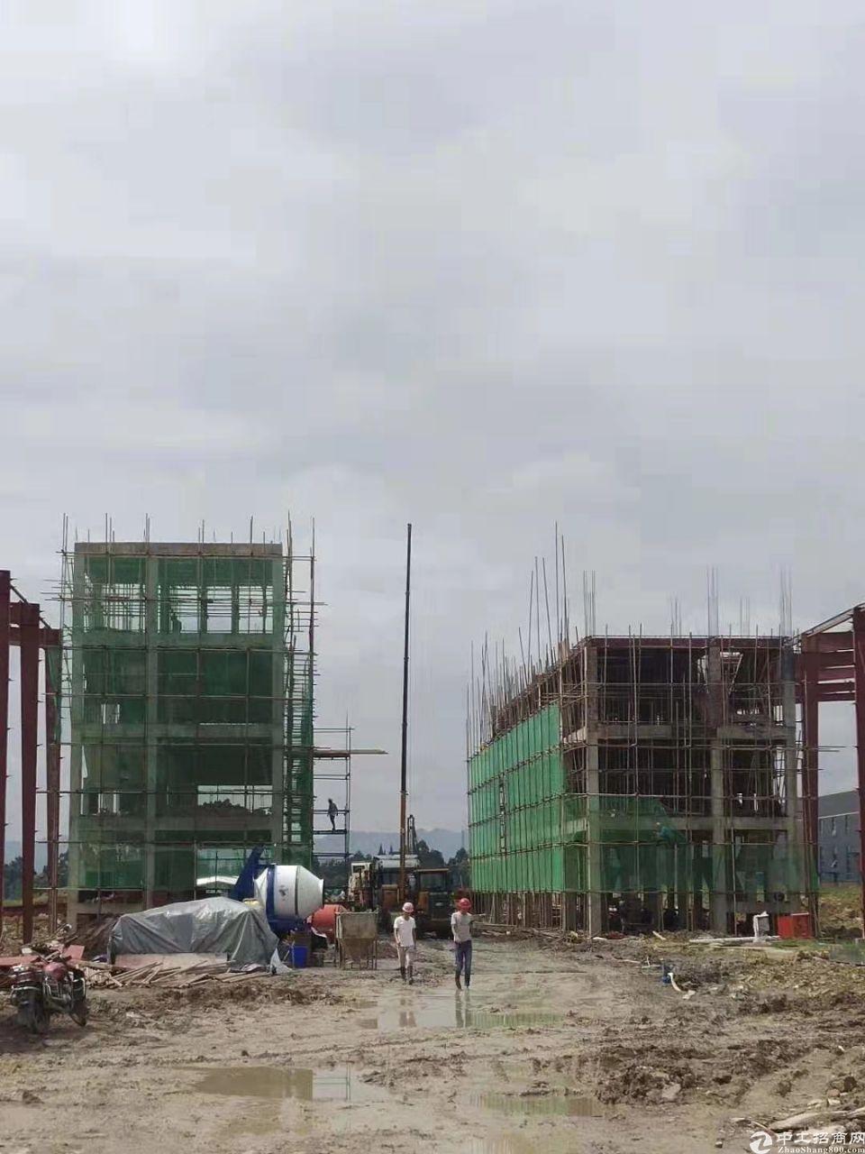出售成雅工业园区钢结构厂房7000平米可生产家具-图5