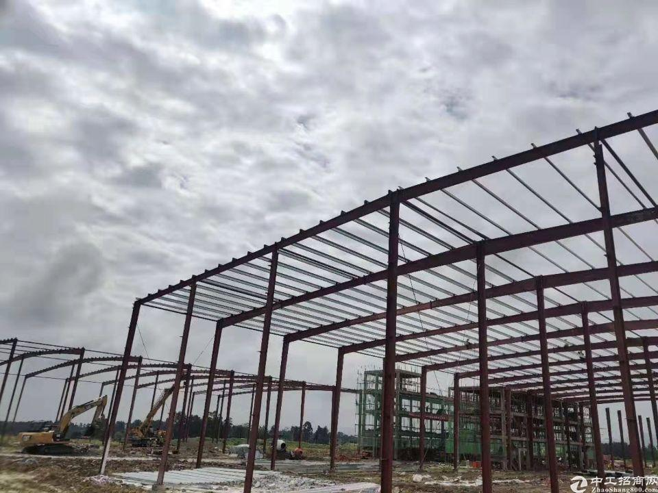 出售成雅工业园区钢结构厂房7000平米可生产家具-图3