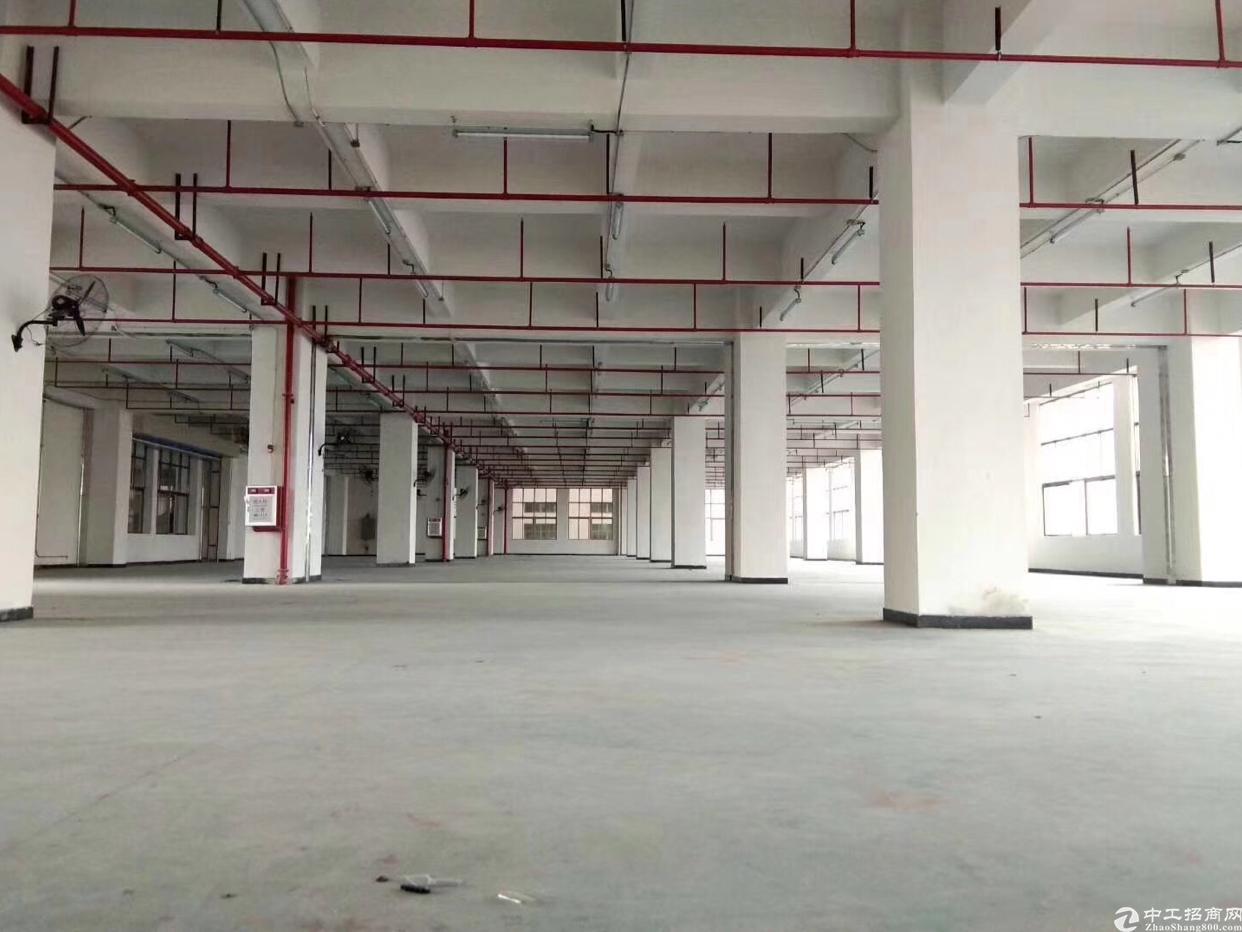 长安集体厂房小独院出售