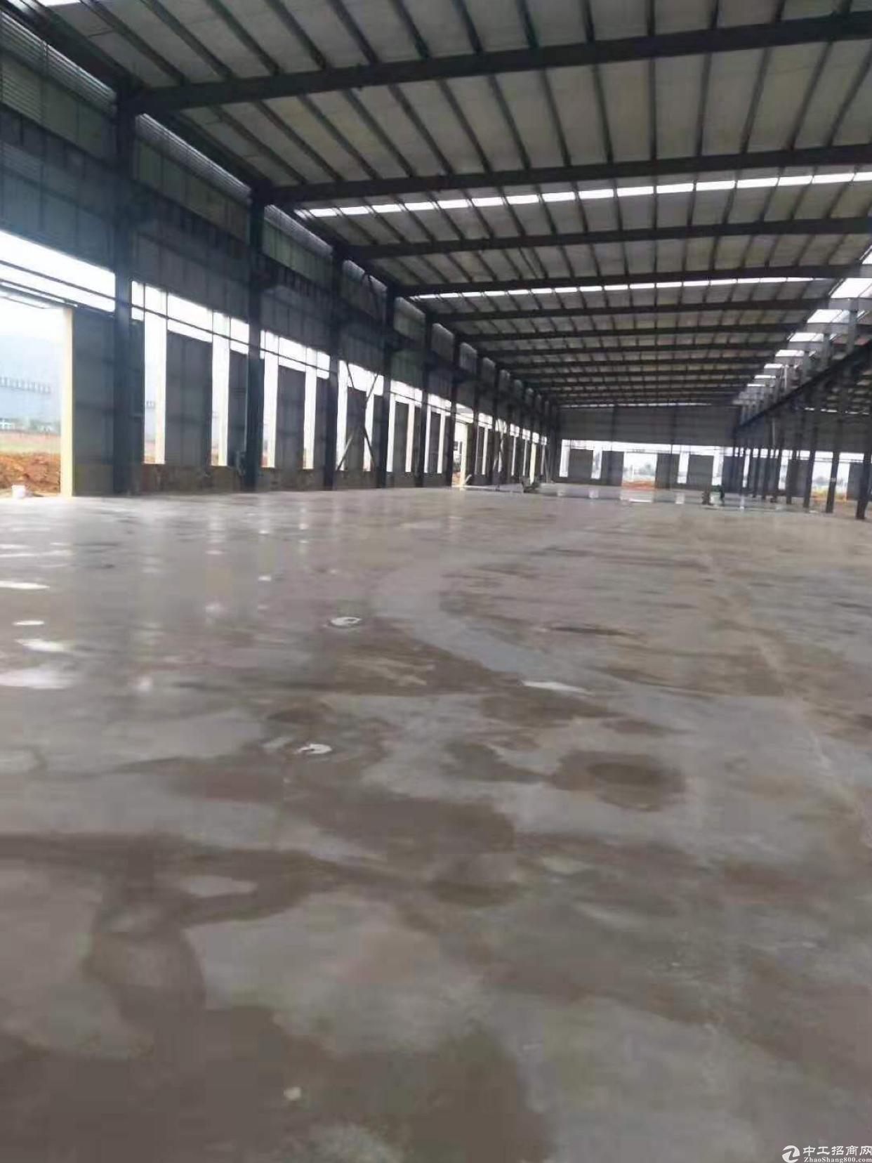 龙泉经开区单层钢结构7000平标准厂房招商