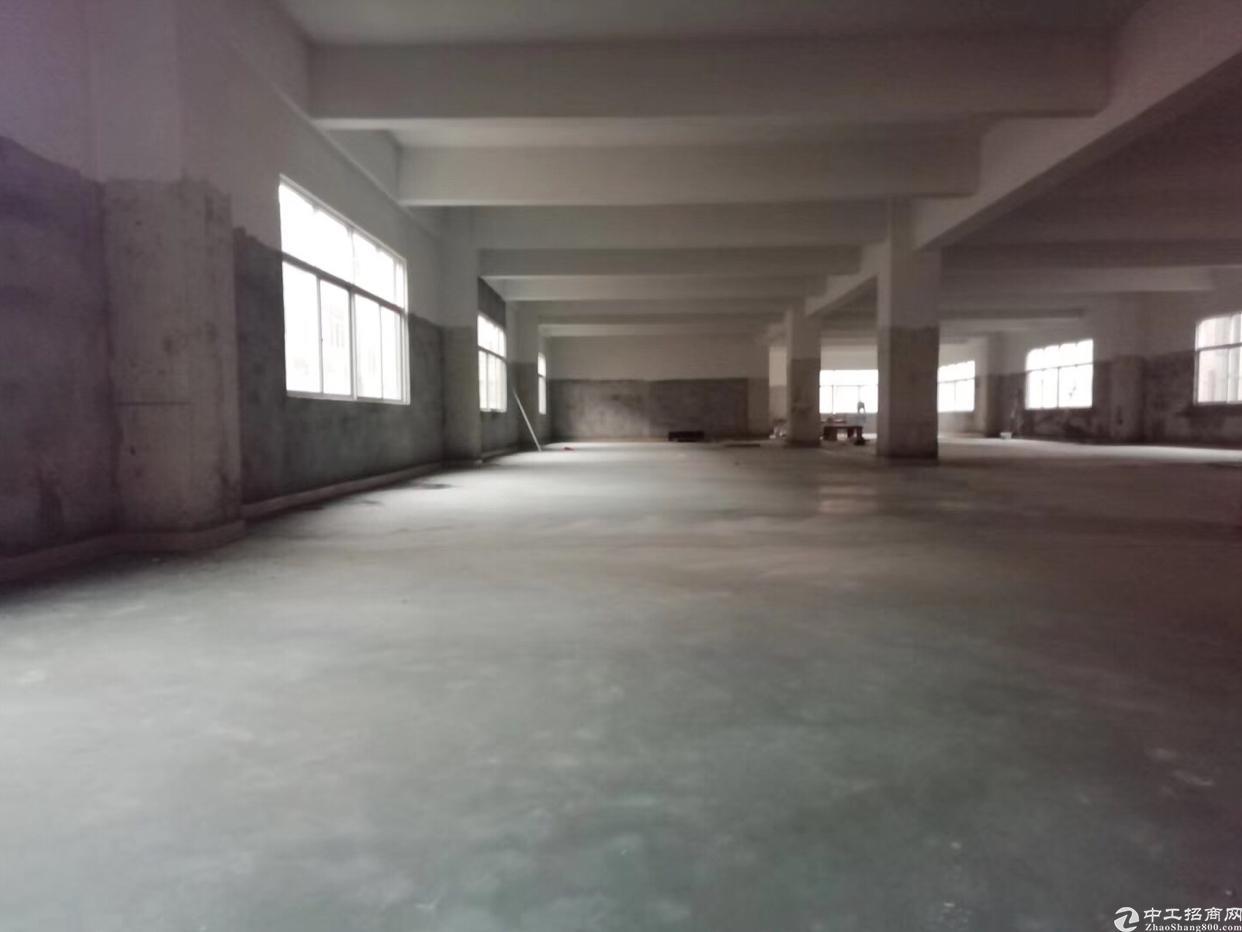 塘厦镇临时仓库700平方出租