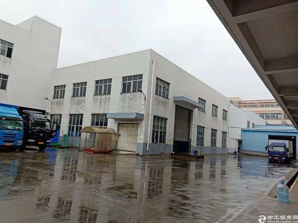 茶山新出独院砖墙到顶单一层厂房3000平,滴水9米,空地大
