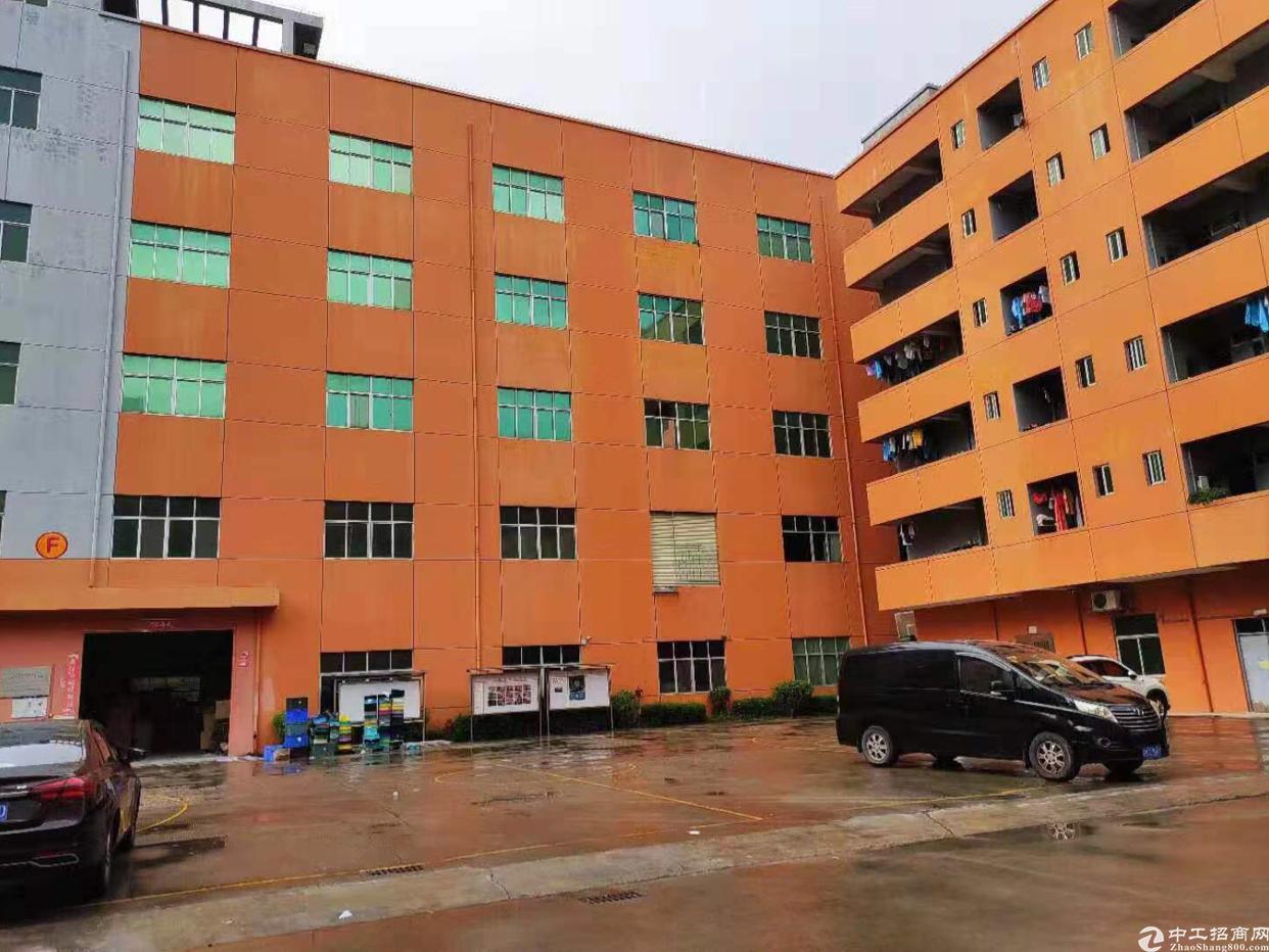 独院厂房出租2万平方米适合做培训学校