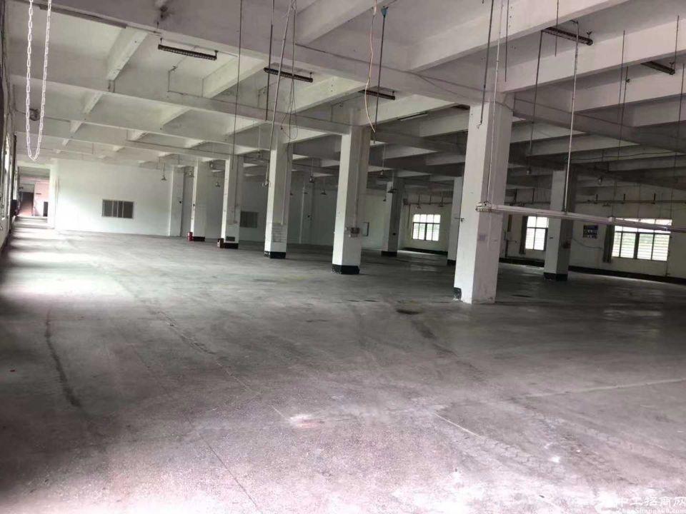 道滘一楼仓库招租,进车方便,空地大。