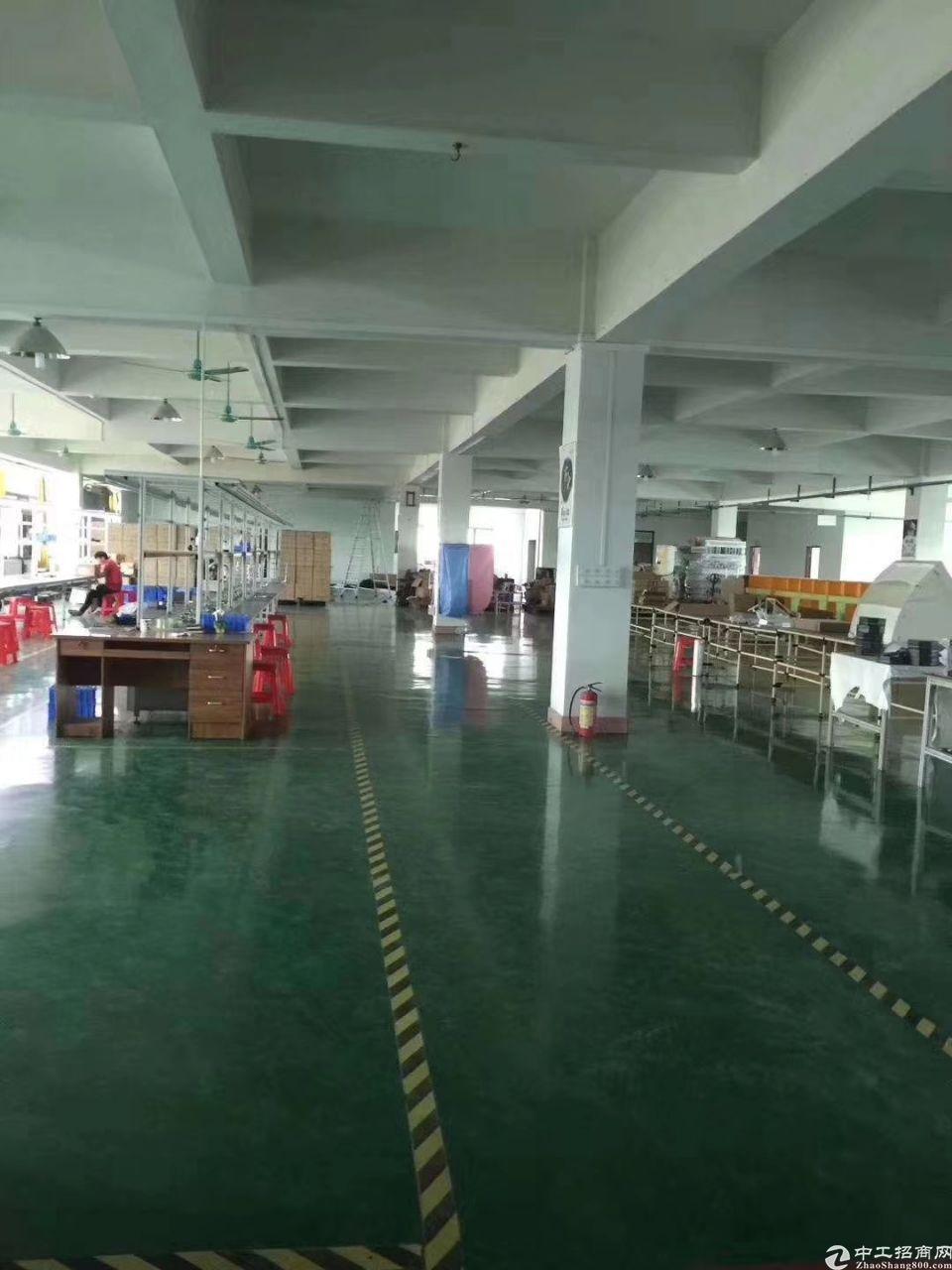 东莞企石标准厂房空出楼上地坪漆车间1300平方