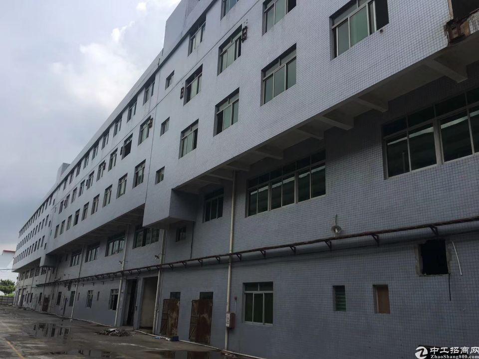 洪梅镇工业区标准厂房出租