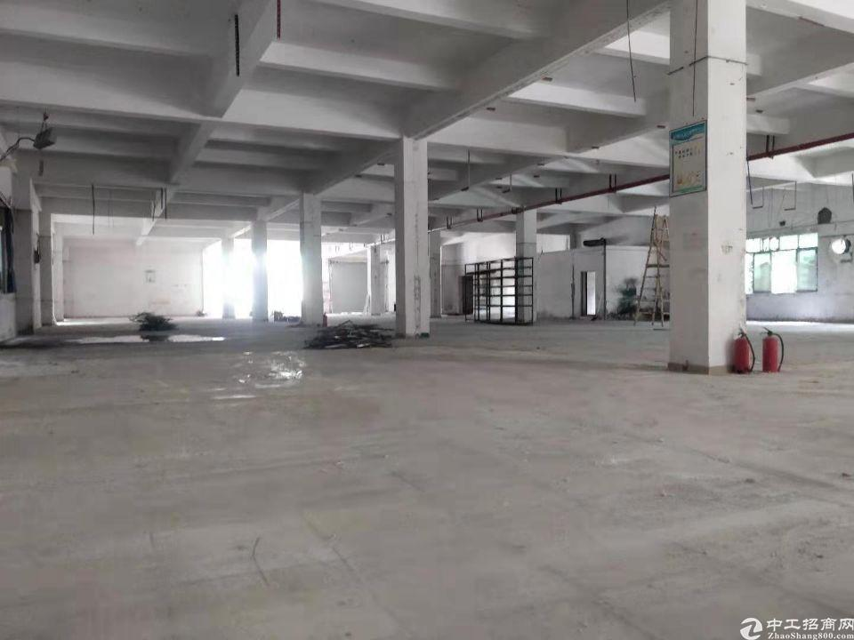 东城南城附近独院标准厂房办公仓库出租