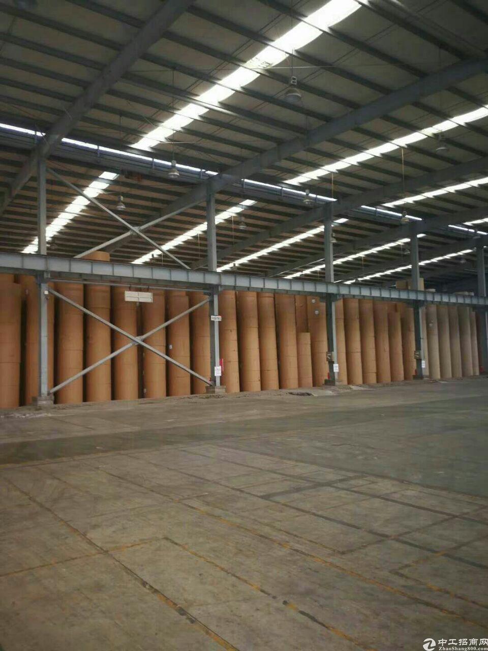 中堂原房东单一层钢构工业园厂房3栋可分租