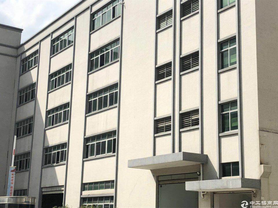 麻涌镇一手业主厂房800平米出租报价19