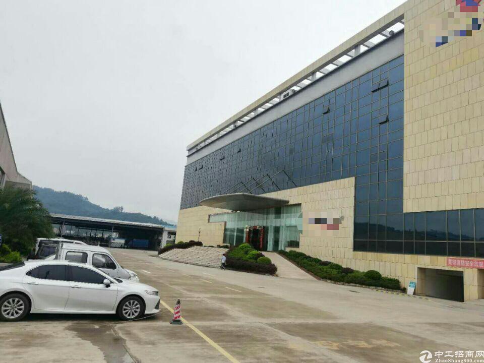 惠阳新圩镇商业街中心商业楼3万平方