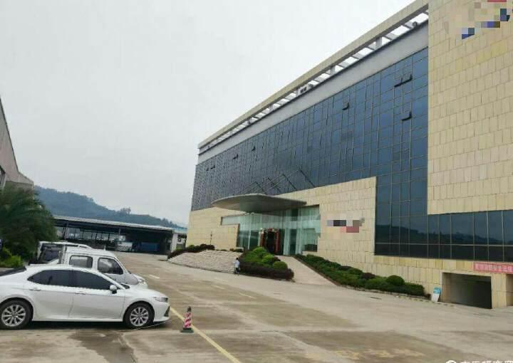 惠阳新圩镇商业街中心商业楼3万平方图片1
