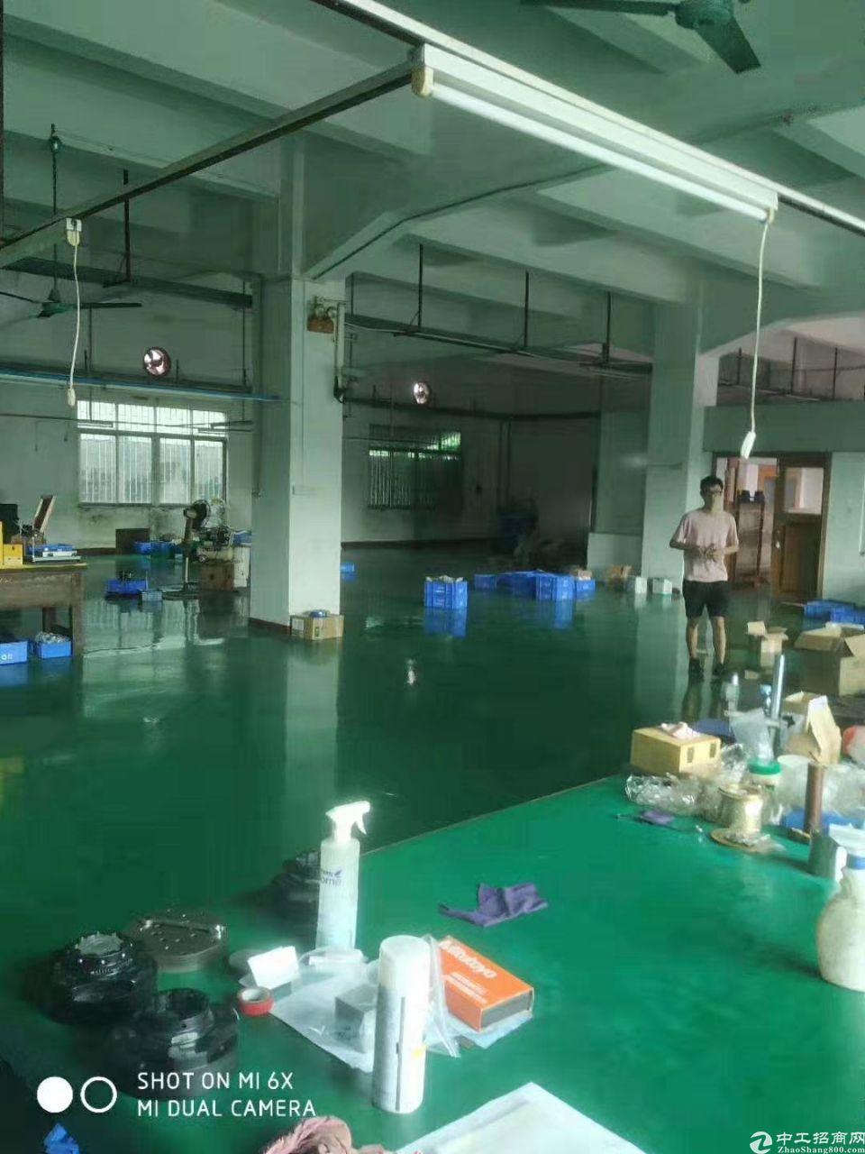 石碣新城区标准厂房400平方