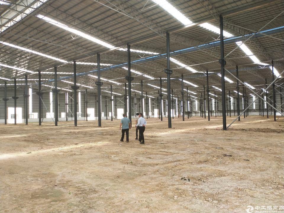 全新单一层滴水十米全新钢构厂房原房东招租36
