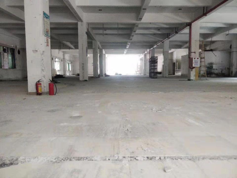东城新出标准一楼独院厂房1800平米