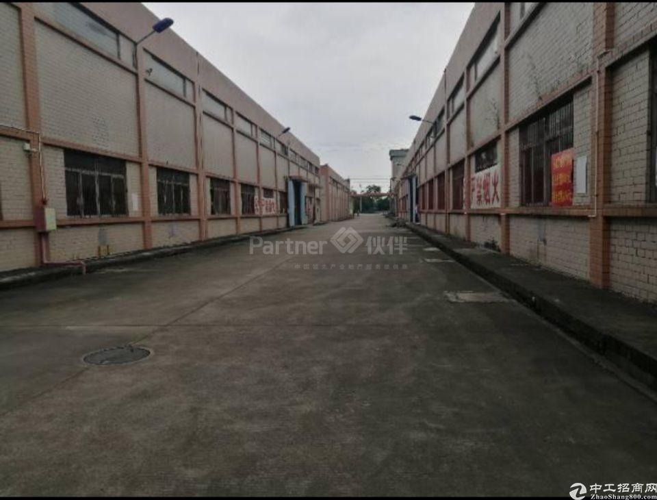 道滘原房东独门独院标准厂房10000平食品行业形象好