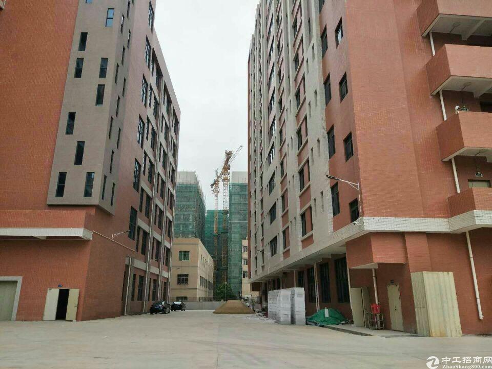 惠阳秋长标准一楼6米高3200平米出租