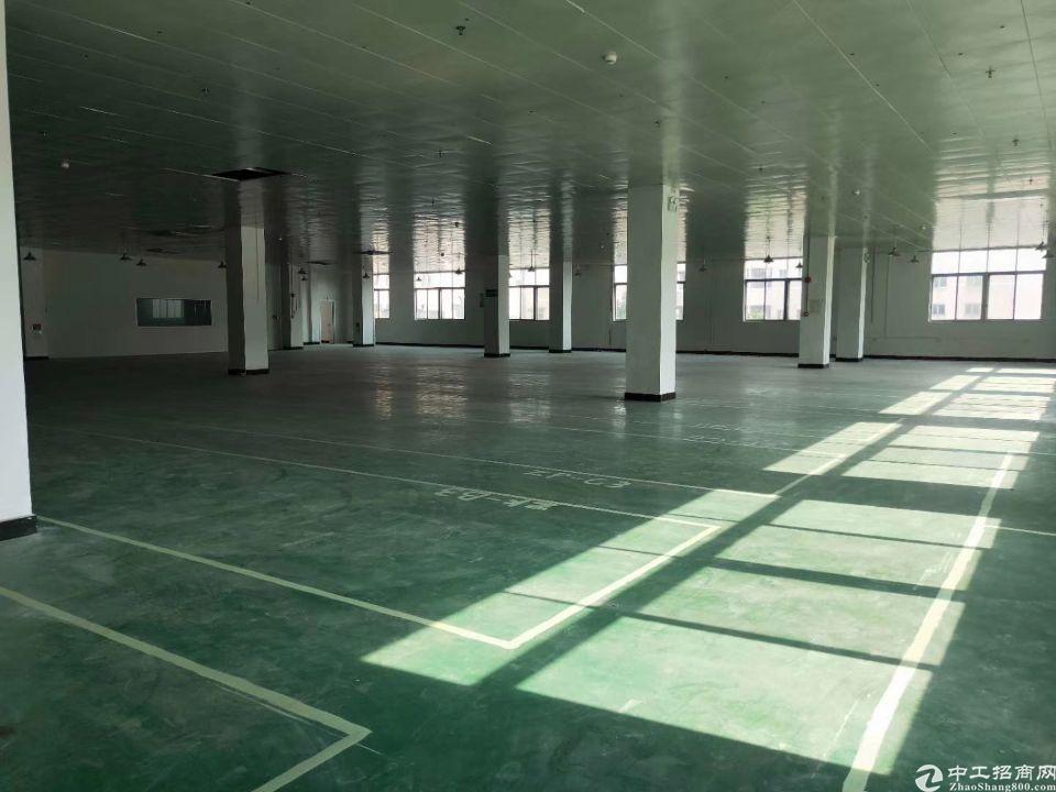 高埗镇新出原房东独门独院8000方厂房1-3层约6000平方