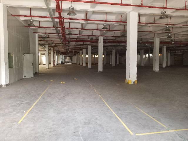 狮岭镇前进村原房东独门独院标准厂房分租6300平