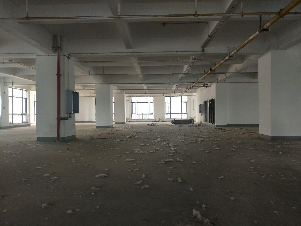 阳逻仓库5000平米,独栋,配套齐全,可分租