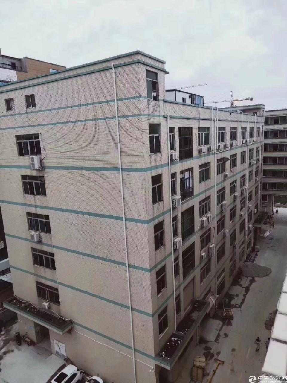 龙华红本整栋宿舍楼4300平