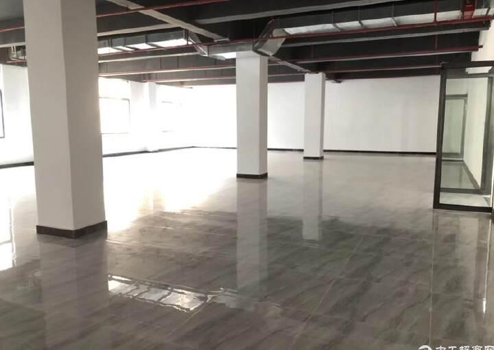 福永会展中心精装修写字楼300平方,做好隔间图片2