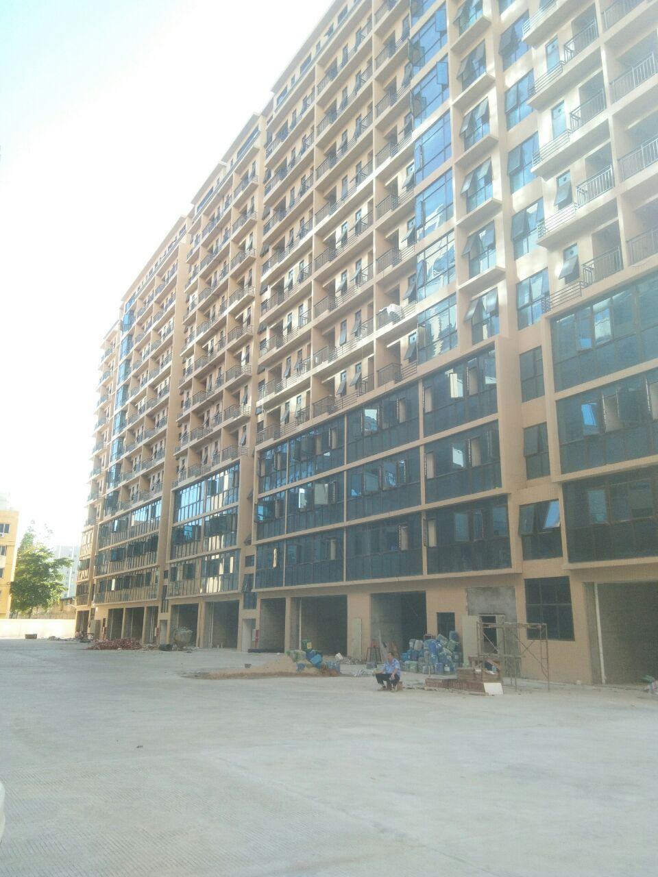 长安沙区单一层10000平方大小可分租-图3