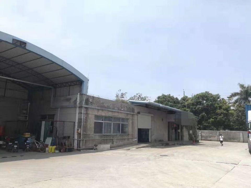 茶山镇新出单一层标准厂房1500平方招租中