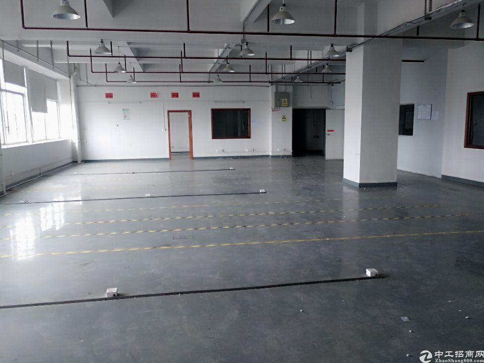 石岩新出楼上580平带装修厂房招租,带消防喷淋