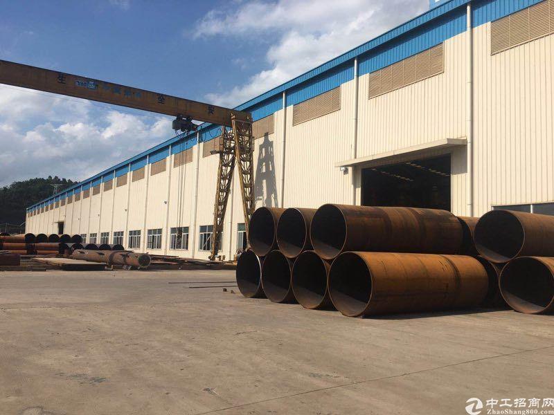 马安单一层钢构厂房40000平米出租