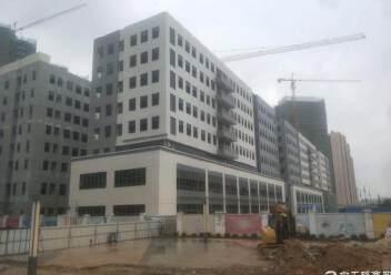 深圳观澜建筑30047平国有证厂房出售.交通便利周边配套齐全图片3